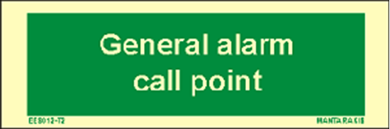 Picture of Text General Alarm Call Point 5 x 15