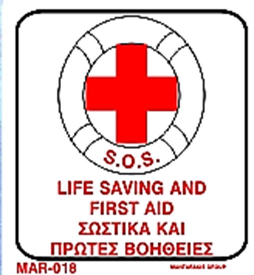Εικόνα από LIFE SAVING AND FIRST AID 20X20
