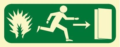 Picture of FIRE EXIT RIGHT SIGN 12X30