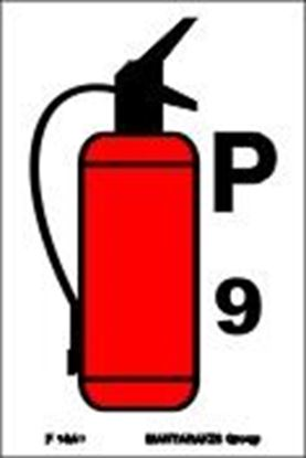 Picture of FIRE EXTINGUISHER P9 15X10